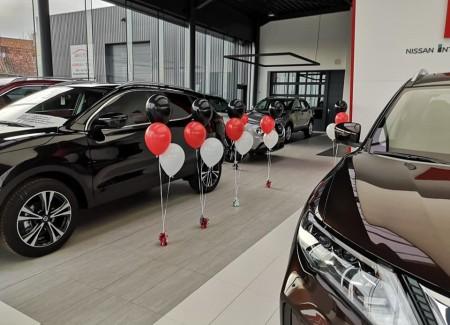 Heliumballonnen Nissan Tielt